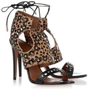 AQUAZZURA Studded leopard-print calf hair Sandals